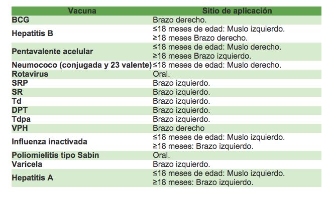 sitios de aplicacion de vacunas